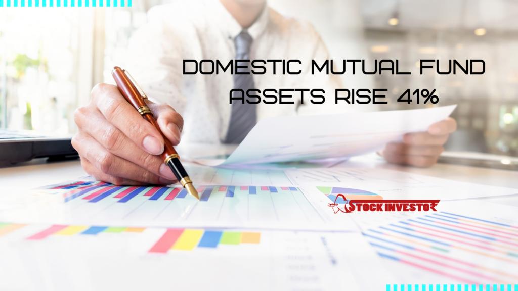 Domestic Mutual Fund assets rise 41%